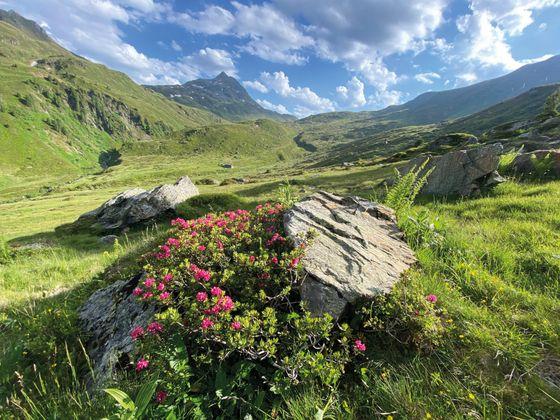 Kelchsau (Tirol)