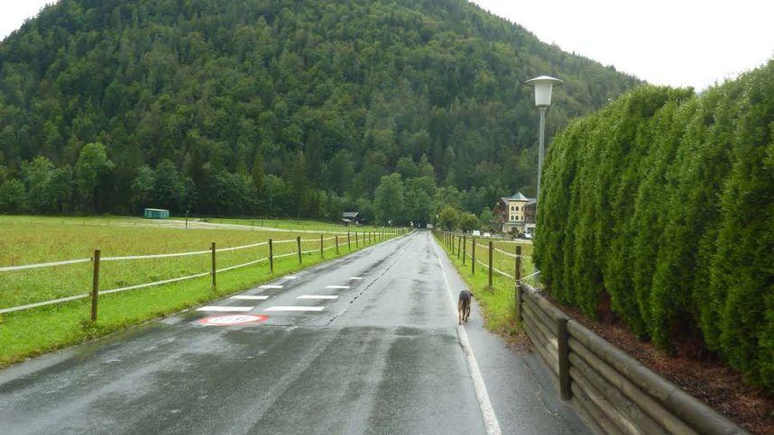 Gemeinde St. Ulrich wegen Gewerbegebiet unter Beschuss