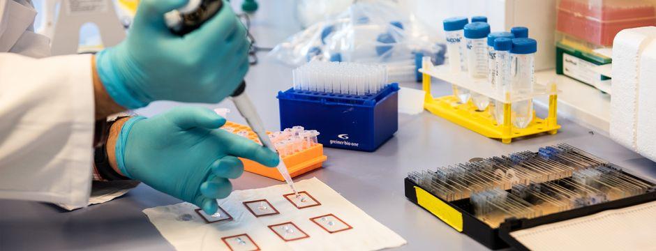 Reproduktionszahl bei 0,96, drei neue positive Testergebnisse in Tirol